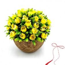 FG01 - Floare Ghiveci Primavara