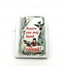 BC01.4-AY10 Martisor brosa Cea mai buna Colega + Plic cadou